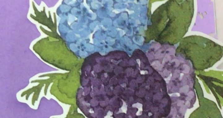 Fussy cut flowers from the Hydrangea Hill Designer Series Paper