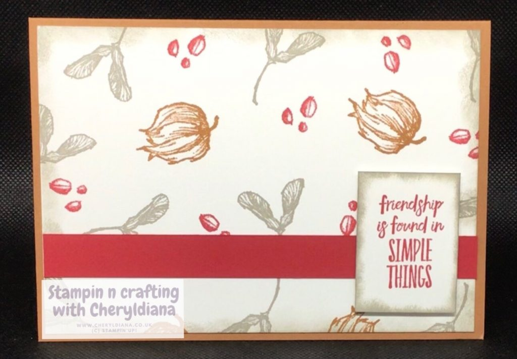Simple card using Enjoy The Moment and Real Red, Gray Granite and Cinnamon Cider colours