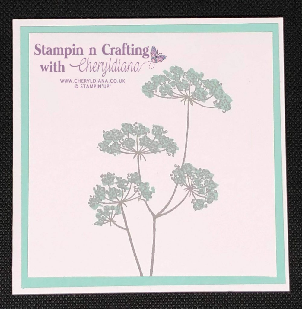 Simple card using Lady Anne's Lace stamp set and the colour Pool Party