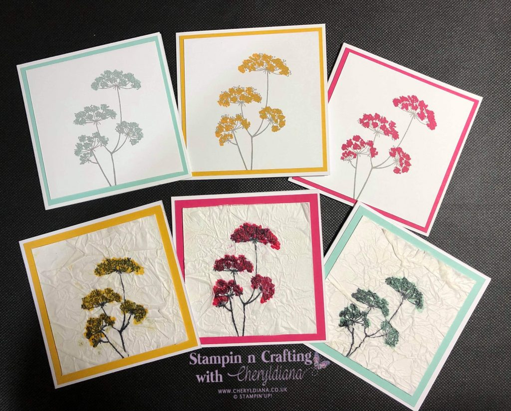 Six simple cards using Lady Anne's Lace stamp set, the colours Bumblebee, Melon Mambo and Pool Party and showing the tissue technique.