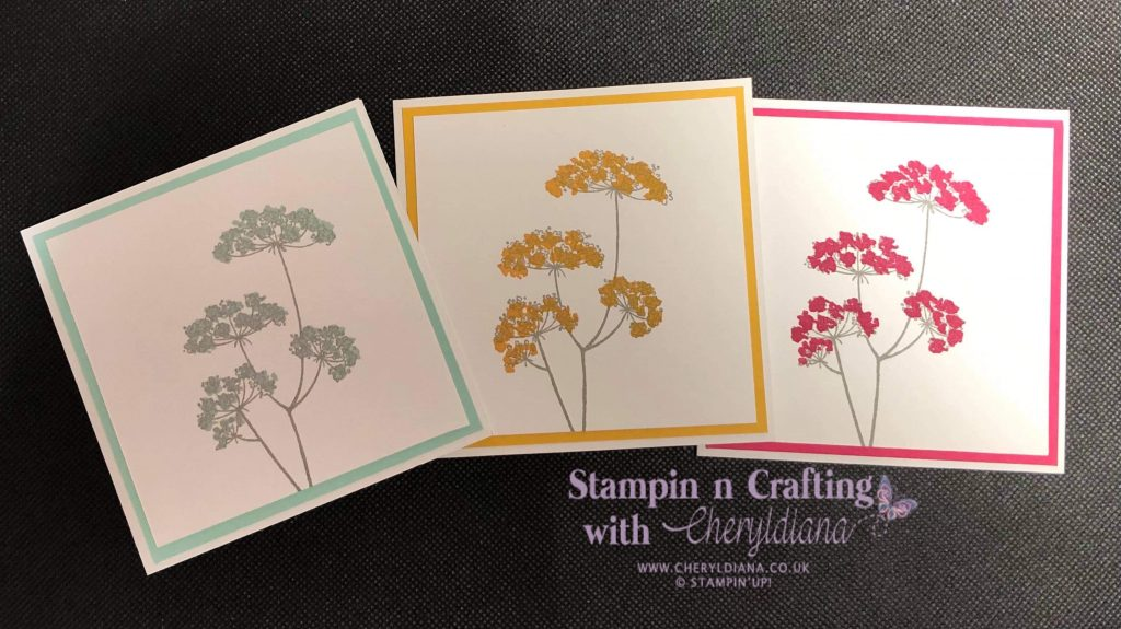 Three simple cards using Lady Anne's Lace stamp set, using the colours Bumblebee, Melon Mambo and Pool Party