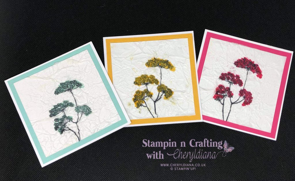 Three simple cards using Lady Anne's Lace stamp set, using the colours Bumblebee, Melon Mambo and Pool Party and showing the tissue technique.
