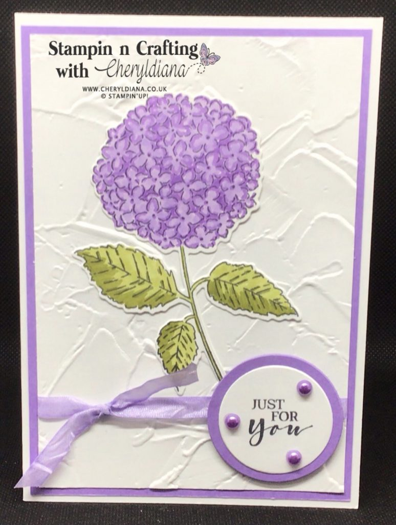 Highland Heather 'Just for You' cards using Hydrangea Haven Bundle