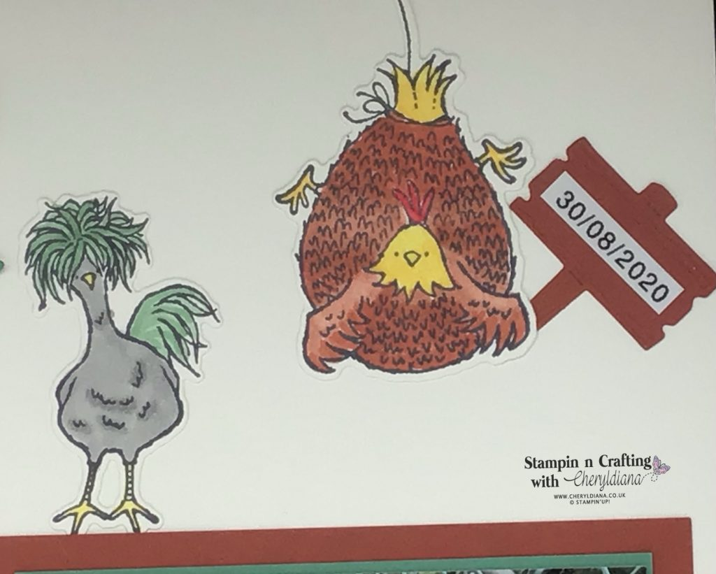 Photo of chicken holding sign with date of visit to farm for the Feeding the Chickens Scrapbook Layout