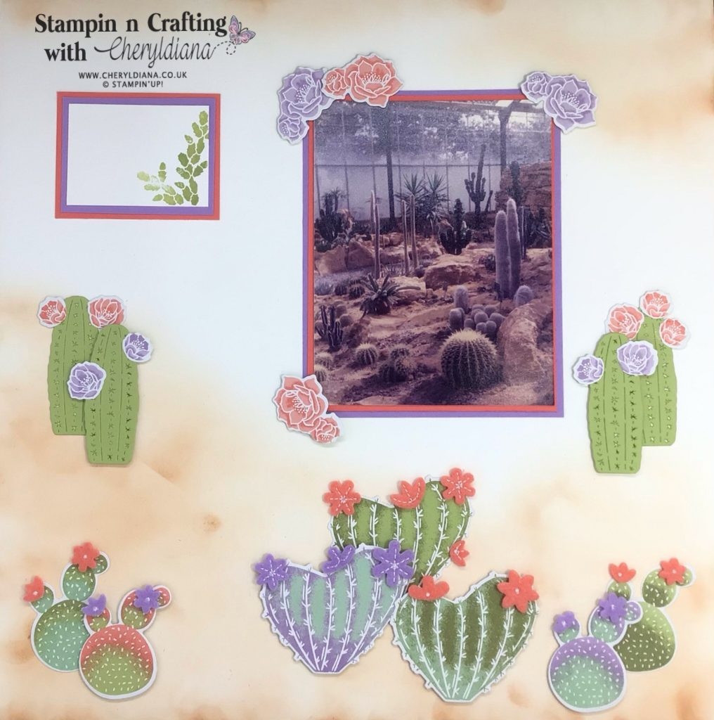 Scrapbook layout using the Flowering Cactus Product Medley