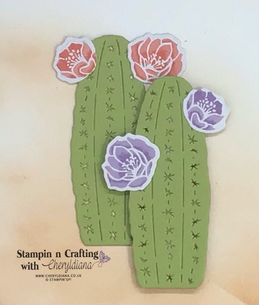 Photograph showing tall die cut cacti and flowers